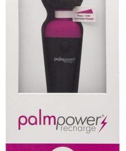 PalmPower Massage Wand Recharge Waterproof
